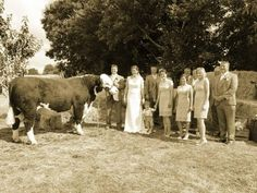 The bull. Wedding surprise for he bride. My Best Friend, Best Friends, Surprise For Him, Friend Wedding, I Am Awesome, Wedding Photos, Bride, Country Living, Pretty