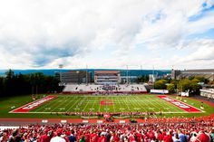 Let's go Red!  Photo by Ray Li MMH'13