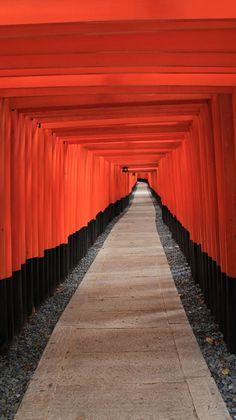Arcada del templo Fushimi Inari, en Kioto. / MANUEL PALACIOS