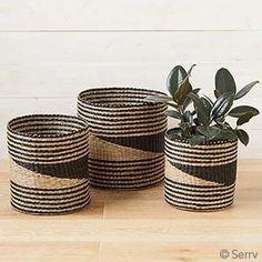 Fair Trade Sea Grass Basket, Set of 3 Baskets On Wall, Storage Baskets, Easy Storage, Sisal, Basket Weaving, Hand Weaving, Toy Bins, Plant Basket, Market Baskets