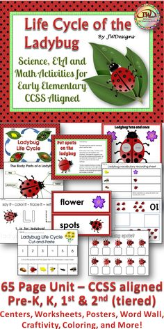 This 65 page unit will allow you to incorporate the science lesson with ELA and math.  Ladybug themed with cute, but realistic clip art.  Included are math centers, vocabulary (word wall), life cycle posters, insect parts, a teacher read on ladybugs, reading comprehension, counting, addition, a life cycle craftivity and so much more! k-2nd and homeschoolers. $