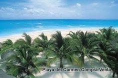 Playa del Carmen beaches Quintana Roo Q.Roo Mexico