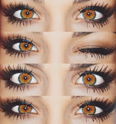 goals, hazel eyes, make, up, brown Beautiful Eyes Color, Pretty Eyes, Cool Eyes, Natural Color Contacts, Green Colored Contacts, Colored Eye Contact Lenses, Photo Oeil, Andrea Russett, Aesthetic Eyes