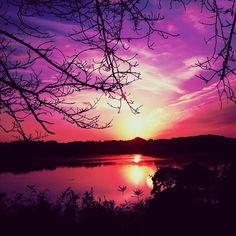 Landscape, purple, color, silhouette,
