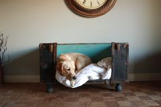 RESERVED FOR EMMA Antique Trunk Dog Bed by SalvageShack on Etsy