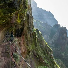 Way back from Pico Ruivo - Madeira's highest peak. Vertical walls and a narrow trail. #madeiraisland #mountains #kochamgory #folkgreen #mountainlovers#amazingview #discoverearth #wildernessnation #ourdailyplanet #hiking #trekking #hikingadventures #madeira #góry #earth_deluxe #traveling #travel #podroze #trekking #nakedplanet