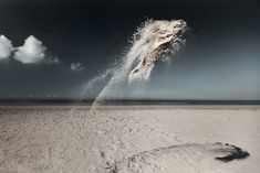 Sand Creatures Suspended in Midair by Claire Droppert sand high speed