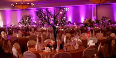 Beautiful Anaheim Wedding Receptions | Venues By Wyndham Anaheim Hotel