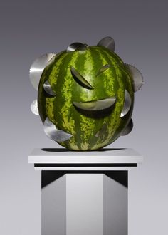 Forbidden Fruits Kyle Bean and Aaron Tilley #watermelon #anguria #pasteque #fooddesign - Carefully selected by Gorgonia www.gorgonia.it