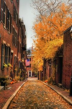 lovely street in the fall