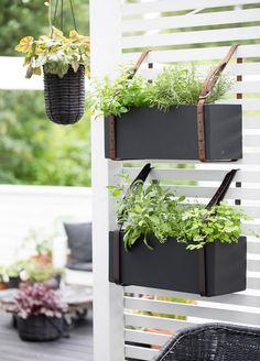 Garden Crafts, Diy Garden Decor, Vertical Farm, Mini Plantas, Balkon Design, Small Space Interior Design, Backyard Projects, Balcony Garden, Dream Garden