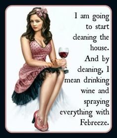 How we clean :) ill be drinkin margaritas!!