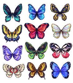 기분전환겸 딸기말고 나비그림 그냥 나빈데 보석나비..() 같이 그리고싶었다 더듬이는 일부로 뺌