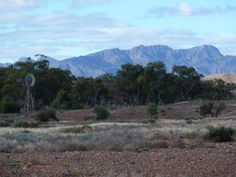 Moralana station looking at western wall of Wilpena pound