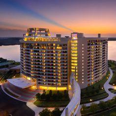 Disney Resort Hotels, Disney's Contemporary Resort - Bay Lake Tower, Walt Disney World Resort