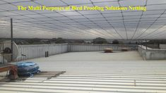 We provide bird proofing solutions for industrial, commercial and residential places. Our anti bird net or pigeon protection net is made stainless steel which is durable in every weather. Our Bird netting or Pigeon netting stop them without harming them. Bird Netting, Sparrows, Open Spaces, Nests, Pigeon, Perfect Place, Deck, Industrial, Birds