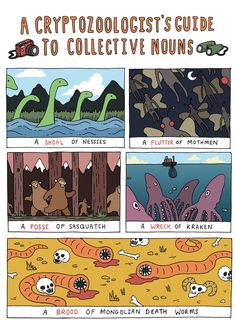 'A Cryptozoologist's Guide to Collective Nouns' ... Awesome!