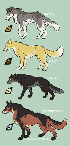 Which one do u prefer? Cute Animal Drawings, Kawaii Drawings, Cool Drawings, Mythical Creatures Art, Fantasy Creatures, Anime Animals, Cute Animals, Fantasy Wolf, Poses References