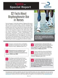The Horse | 12 Facts About Bisphosphonate Use In Horses | TheHorse.com