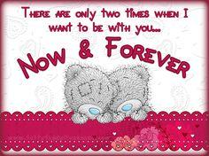 Tatty Teddy ~ Now & Forever.