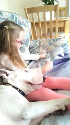 "http://lrd.to/milo_ze  Layla reads the bestselling multi-award winning Bull Terrier book ""Milo & Ze"" to her best friend Alfie...  WINNERS: Best Illustrated Children's Ebook - MOONBEAM Awards 2015  WINNERS: Best Children's Animal Book - READER'S FAVORITE Awards 2015  WINNERS: Best Illustrated Children's book - IPPY Awards 2015  Join Milo, the long forgotten bull terrier puppy, as he travels the world in search of nothing more than a friend he can call his own. Milo & Ze is the…"