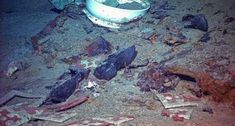 """""""Human remains possibly found in Titanic shipwreck""""  There are certainly human remains there, several thousand people did die, after all.  The article addresses this fact, and brings up just how much of the ocean floor would be off-limits if we made every shipwreck sacrosanct forever.  The photos remain haunting and compelling."""