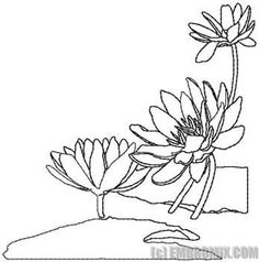 Water Lilies Coloring Page Lilies Drawing Flower Drawing Lotus