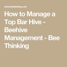 How To Manage A Top Bar Hive   Beehive Management   Bee Thinking