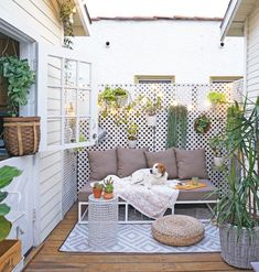 Fill your small patio with tons of outdoor plants.