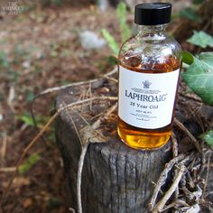 Laphroaig 25 Years is a good whisky, but it didn't have the oomph I was expecting and I didn't get much of the Oloroso coming through. Still, as you might imagine, it was a good whisky. Both the aroma and palate had an overall character I could best describe as a campfire in an orchard. It was sweet and smoky with this oily nature that flowed from nose to finish.