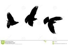 native bird silhouette - Google Search Bird Silhouette, Nativity, Stencils, Printing, Birds, Google Search, Animals, Animales, Animaux