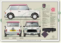 Mini Cooper Classic, Classic Mini, Classic Cars, Retro Cars, Vintage Cars, Mini Cooper Clubman, Classic Portraits, Classic Mercedes, Mini Roses