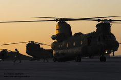 Royal Air Force Chinook helicopters are pictured in Jordan during a training exercise.