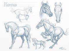 elias de Carvalho Silveira - Horse sketch