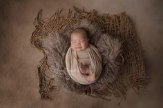 Dory, Bassinet, Furniture, Home Decor, Crib, Decoration Home, Room Decor, Home Furnishings, Baby Crib