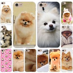 Pomeranian dogs dog cute Hard White Cover Case for iPhone 7 7 Plus 6 6S Plus 5 5S SE 4 4S