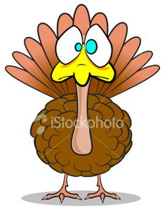 pictures of funny turkeys happy thanksgiving images funny rh pinterest com