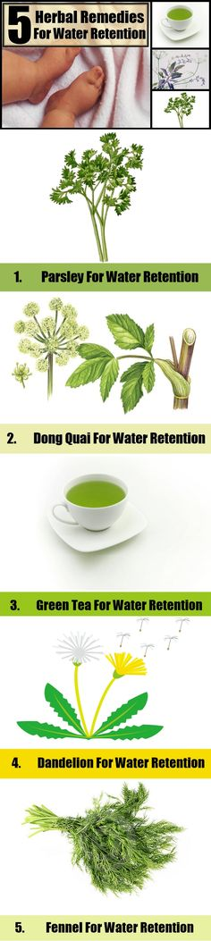 Herbal Remedies for Water Retention