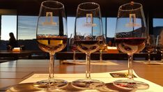 Provas de Vinhos na Quinta do Seixo © Viaje Comigo Douro Portugal, White Wine, Alcoholic Drinks, Glass, Wine Tasting, Traveling, Drinkware, Corning Glass, White Wines