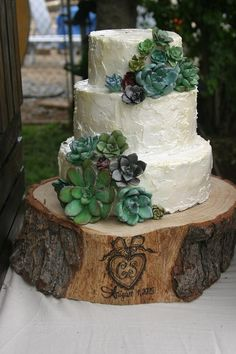 My first wedding cake! Gum paste succulents. Rustic wedding carrot cake and cream cheese frosting. Hand burned tree stump.