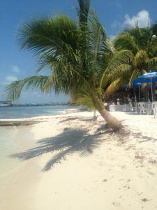 Sposiamoci in spiaggia con cerimonia Maya.  http://www.partyepartenze.it/2016/09/08/messico-nozze-spiaggia-maya/