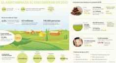 PIB agropecuario sube al ritmo de café, arroz y porcicultura