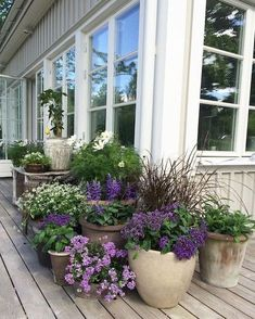 64 stunning front yard cottage garden inspiration ideas - Garden Care, Garden Design and Gardening Supplies Back Gardens, Outdoor Gardens, Front Yard Gardens, Garden Front Of House, Outdoor Pots, Outdoor Living, Garden Cottage, Backyard Cottage, Garden Planters