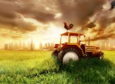 There is no doubt about it … rural real estate is hot!