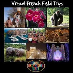Virtual Field Trips in Your Foreign Language Classroom - World Language Cafe French Teaching Resources, Teaching French, Classroom Resources, Teaching Spanish, Teaching Ideas, World Language Classroom, French Education, Core French, Virtual Field Trips