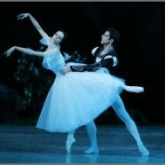 Giselle American Ballet Theatre's Giselle   with Diana Vishneva 2011 NYC