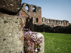 https://flic.kr/p/Q6bq4D | Furness Abbey | Barrow in Furness, Cumbria.  Furness Abbey was one of the richest Cistercian monasteries in England, exceeded only by Fountains Abbey in Yorkshire.  #Architecture #Colour #Photography  www.richardsugden.com  © Richard Sugden 2016 All rights reserved.