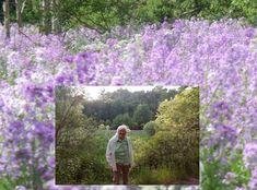 Southwestern Ontario is carpeted in beautiful waves of many shades of phlox this week.  My friend Anne and I taking in the panoramic beauty of phlox fields on one of our many 'escapes to the farmacy'; for the body, mind and spirit dispensing benefits. Healthier You, Ontario, Fields, Spirit, Waves, Beautiful, Beauty, Design
