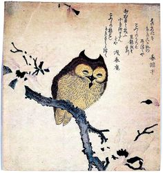 Asian Japanese Art | Japanese ; owl on branch. Scan of 2 d images in the public domain ...