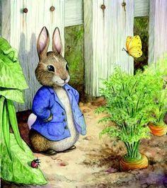 39 Ideas for children garden illustration beatrix potter Garden Illustration, Cute Illustration, Beatrix Potter Illustrations, Susan Wheeler, Beatrice Potter, Peter Rabbit And Friends, Motifs Animal, Bunny Art, Illustrators